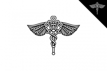 Ornamented Caduceus...